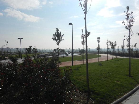 Conclusiones jornada sobre ciudadan a y sostenibilidad for Estudiar jardineria