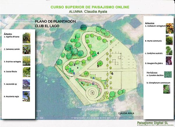 Plano de plantacion_ma_600