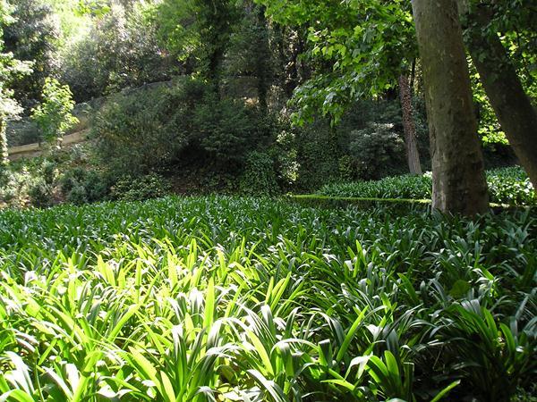 El parque del laberinto de horta lugar de inter s en for Paisajismo barcelona