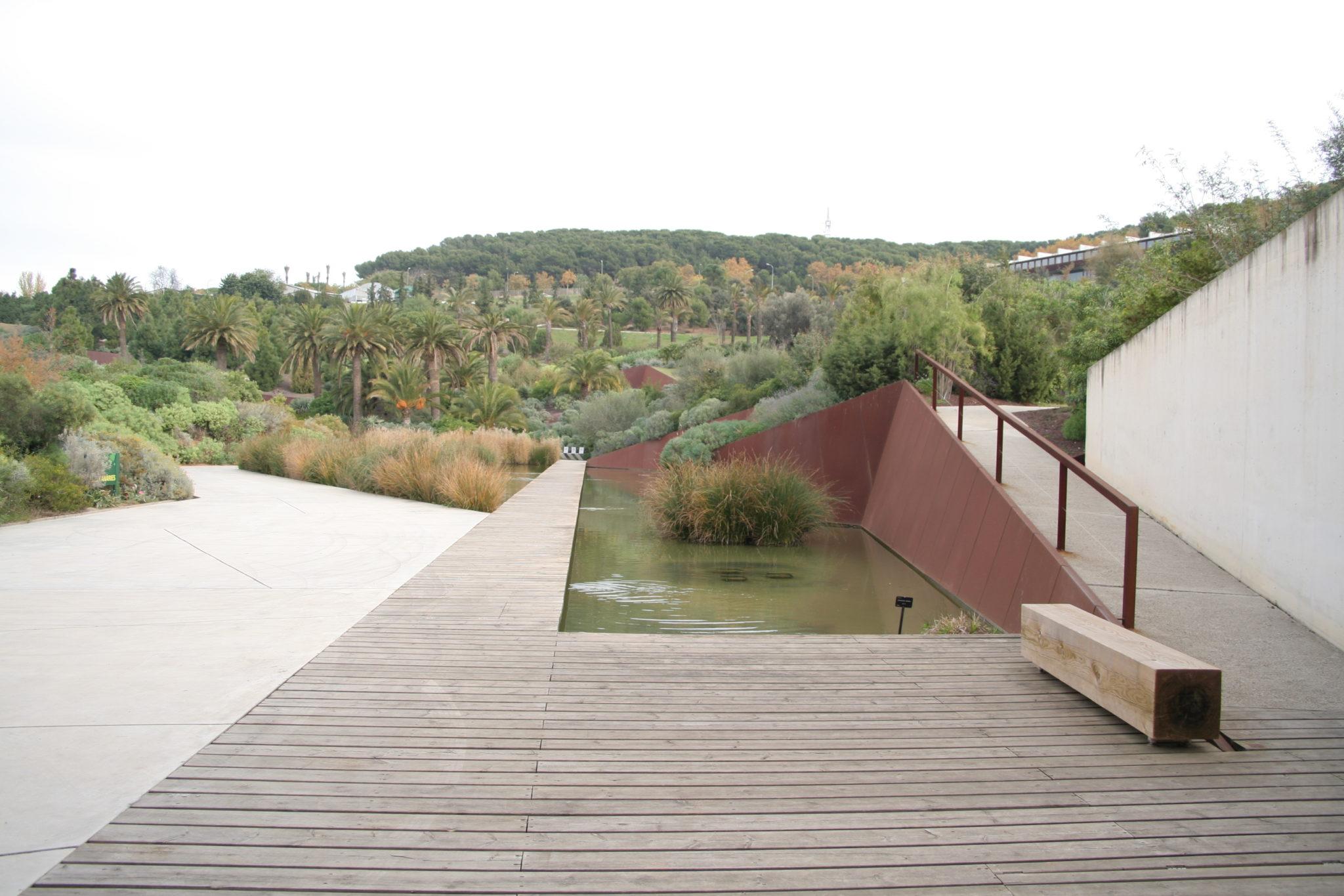 El jard n bot nico de barcelona espera nuevos visitantes for Jardin botanico montjuic