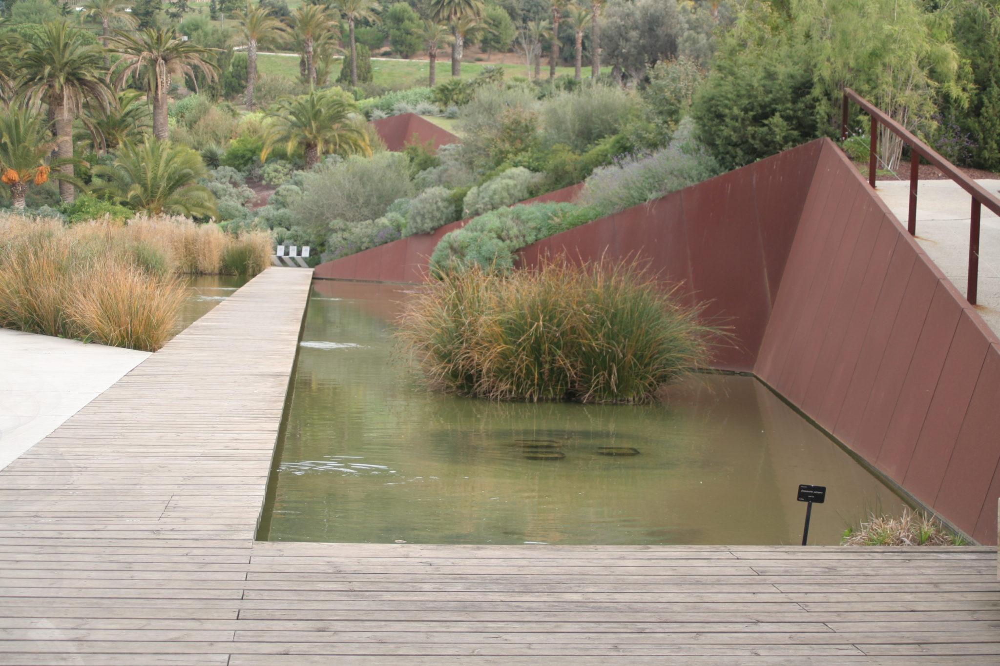 Botanico 002 noticias de paisajismo arte naturaleza y for Inscripcion jardin 2015