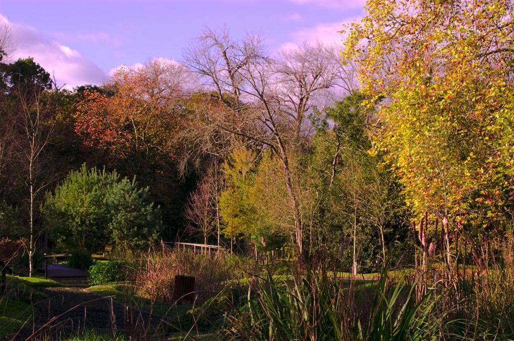 El Jardin Botanico Atlantico De Gijon Merece Ser Visitado Noticias