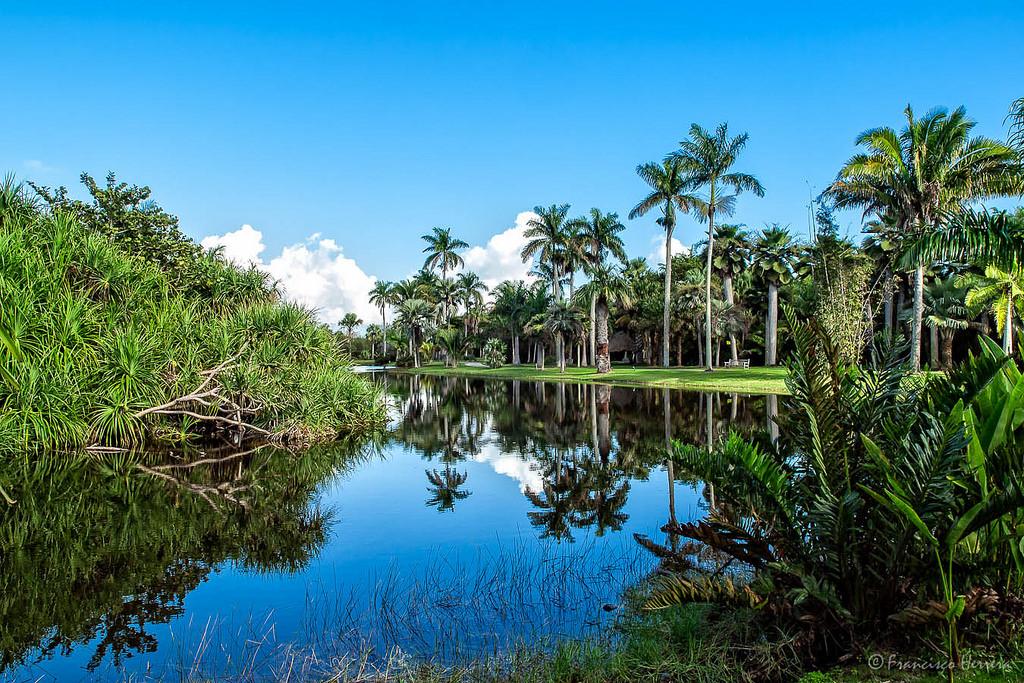 Jardin botanico tropical de fairchild noticias de for Inscripcion jardin 2015