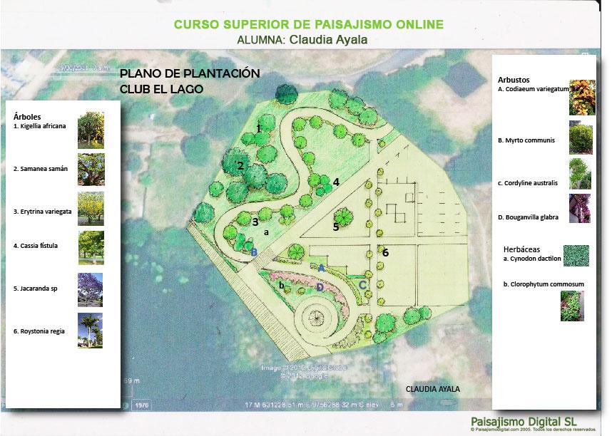 Plano de plantacion_ma