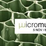"""La exposición """"MICROMUNDO: El lado invisible de la ciencia"""" permanecerá en el Jardín Botánico de la Universidad de Valencia hasta el 8 de diciembre."""