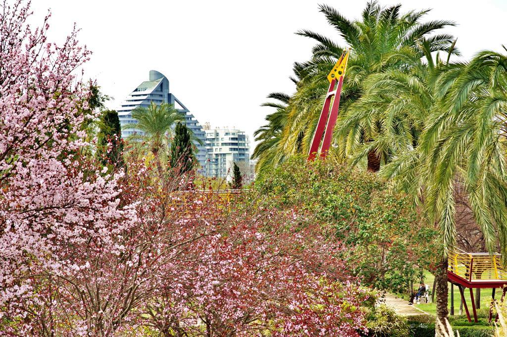 Jard n del turia pulm n verde de la ciudad de valencia for Jardin inscripcion 2016