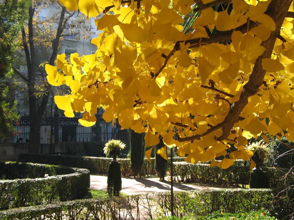 Jardín Botánico de Granada