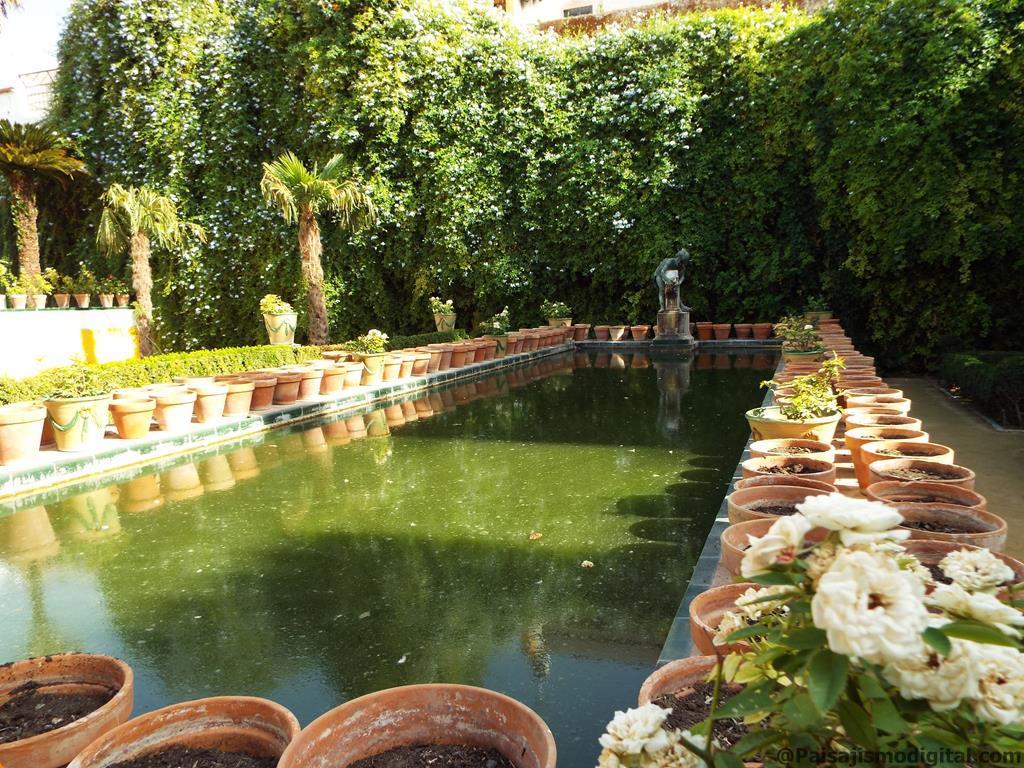 crear un jardín