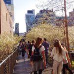 High Line - James Corner