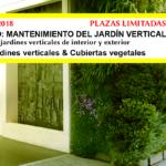 TALLER MONOGRÁFICO MANTENIMIENTO JARDÍN VERTICAL