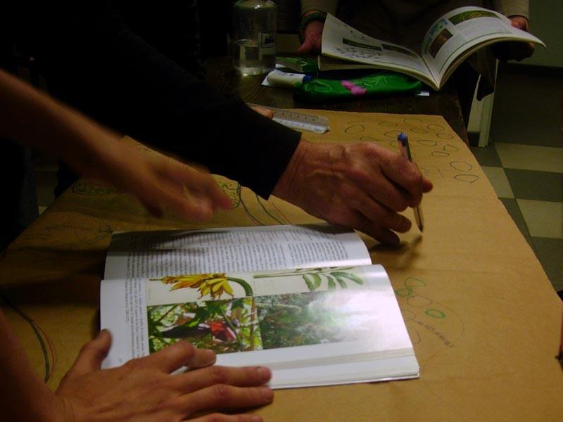 Curso Diseño de Espacios Verdes Sustentables con Plantas Nativas