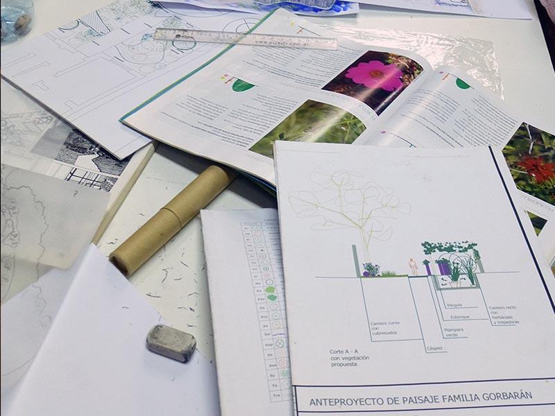 Curso dise o de espacios verdes sustentables con plantas for Curso de diseno de jardines