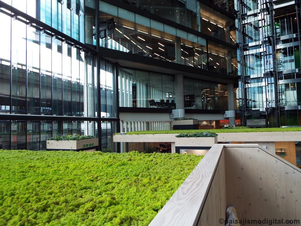 Los Techos Verdes Sustentables Historia Concepto Y Tips
