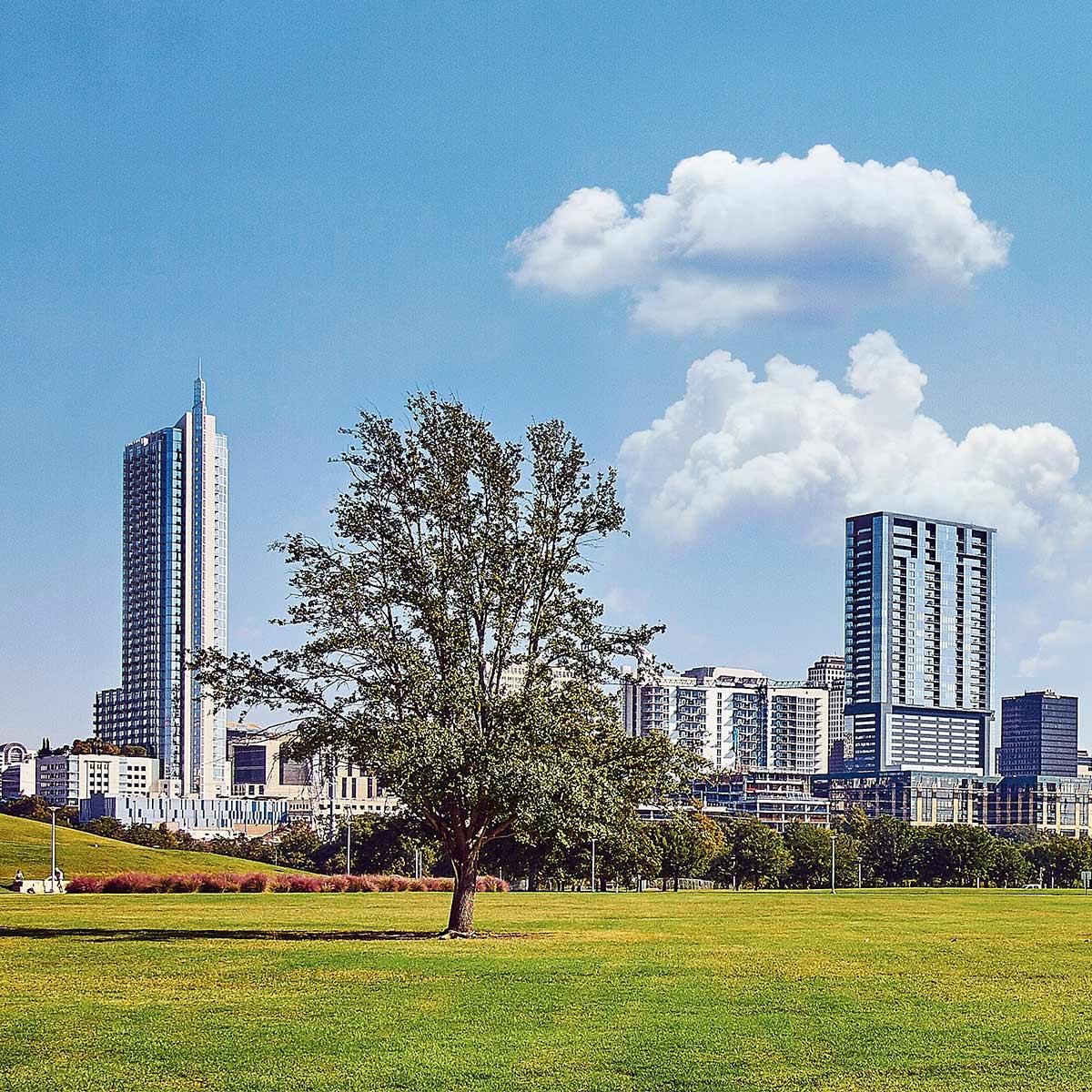Ciudades esponja, la nueva alternativa paisajista para frenar el cambio climático
