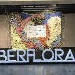 Paisajismo Digital en Iberflora