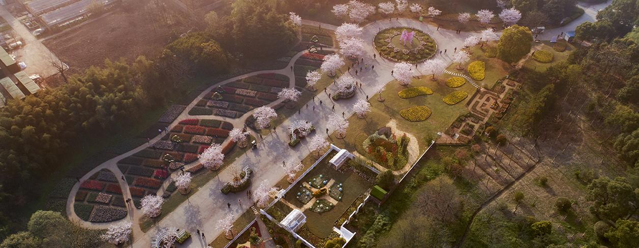 Jardín botánico de Shanghai