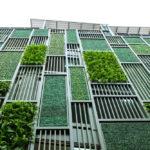 Descubre cómo tu jardín contribuye a mejorar el aislamiento térmico