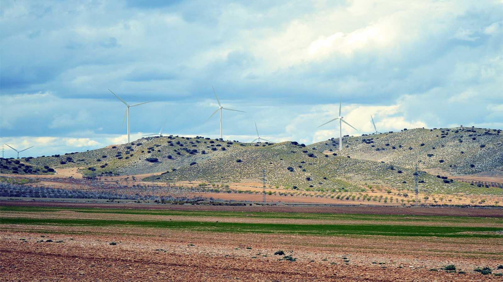 La revolución verde andaluza
