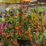 IPM Essen 2020, feria líder en la industria verde