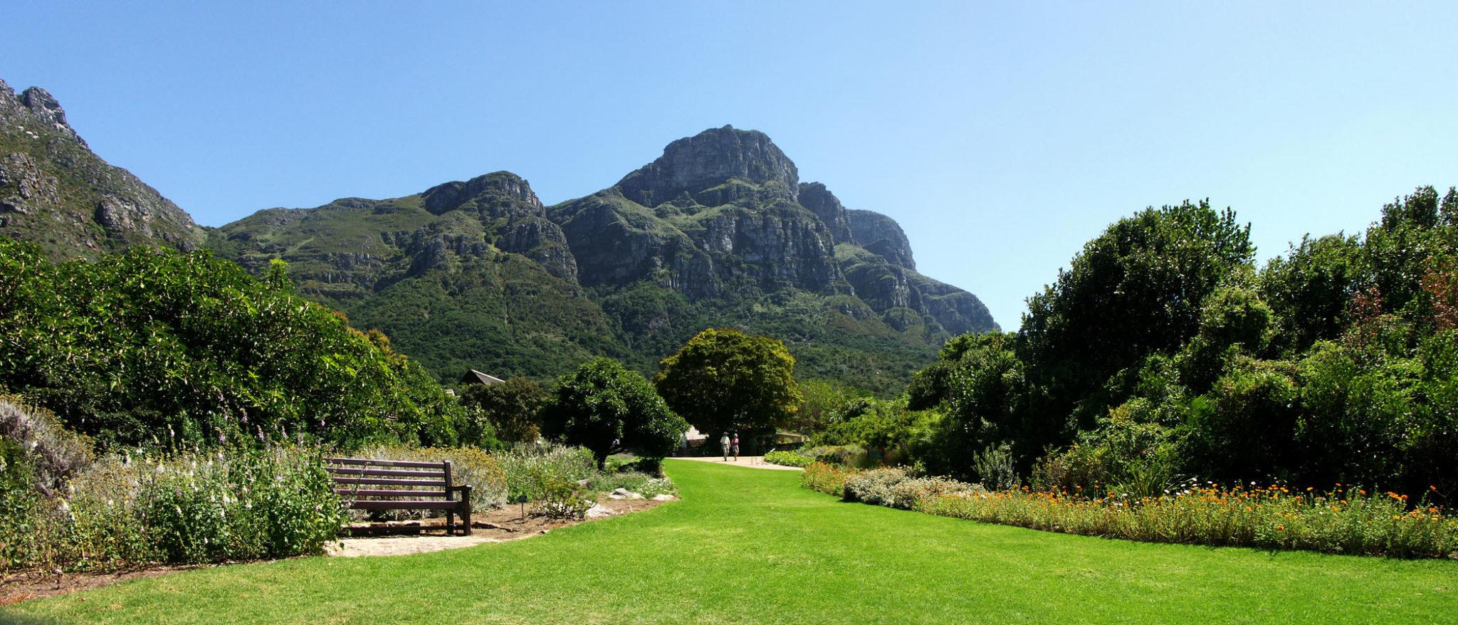 Jardín Botánico Nacional de Kirstenbosch 2