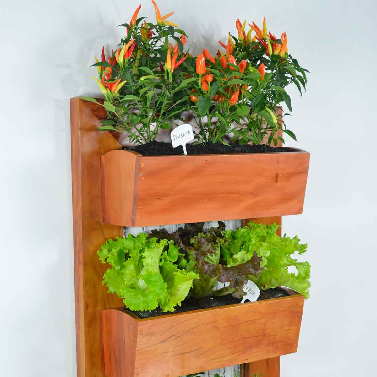 Tendencias de jardines verticales para interiores y exteriores con sistema de plug-in