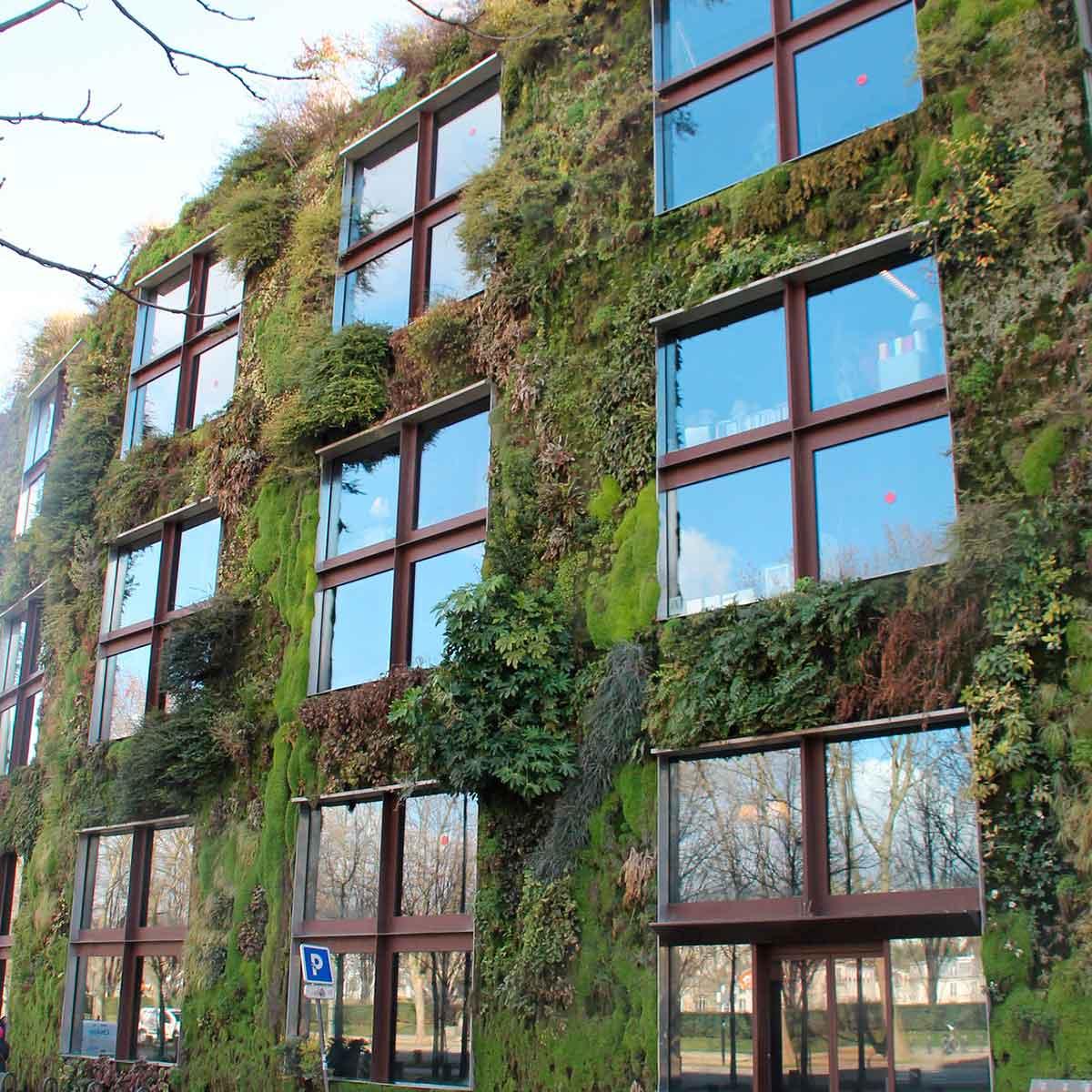 Tendencias de jardines verticales para interiores y exteriores con soporte de sustrato