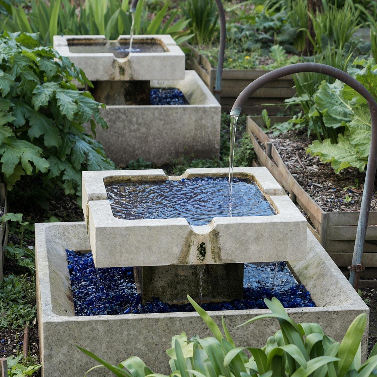 Jardín acuático: cómo crearlo, tips y recomendaciones