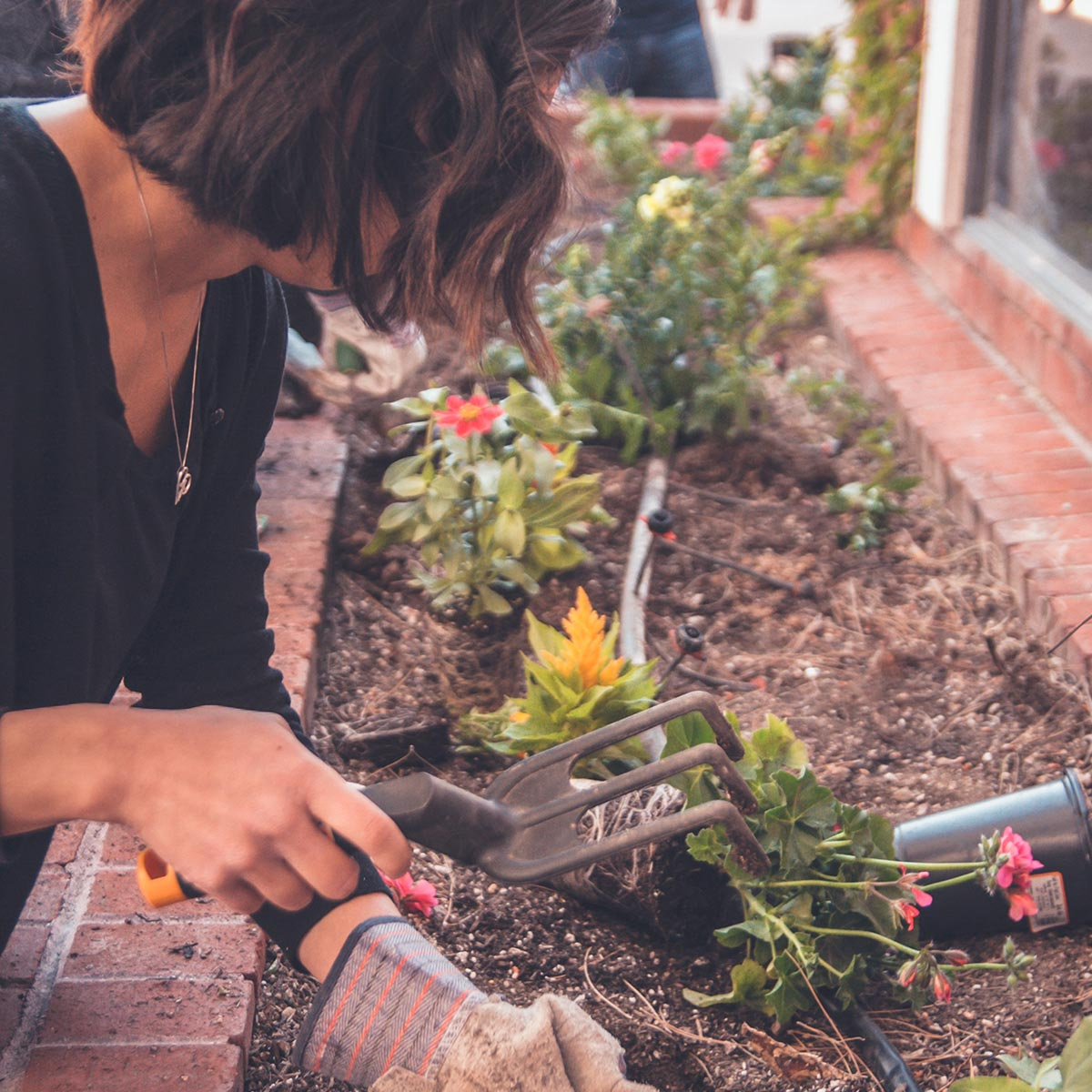 Jardines habitables y ecológicos, un diseño sustentable - Riego por goteo
