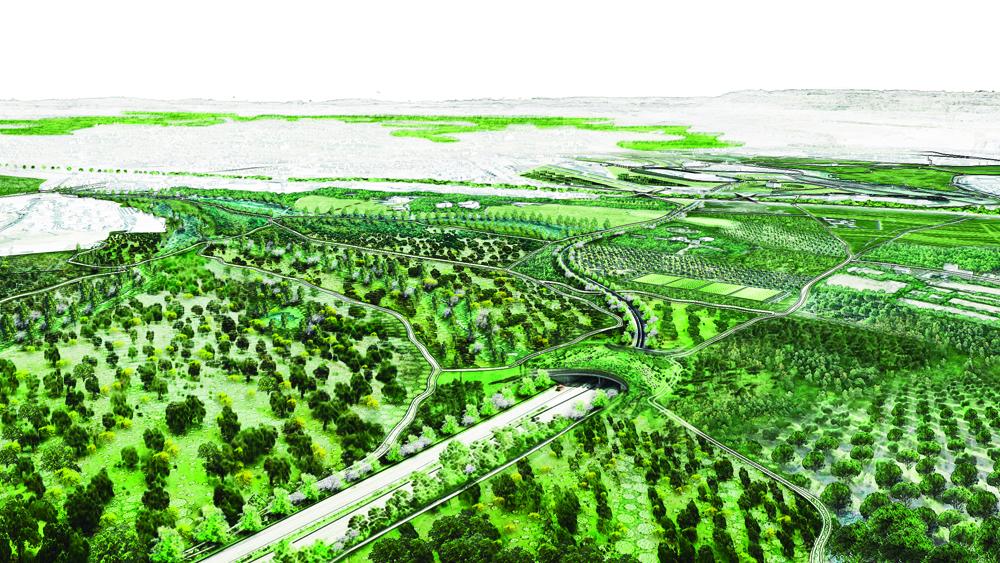 Los tres bosques del suroeste - Vista general y Ecoconector