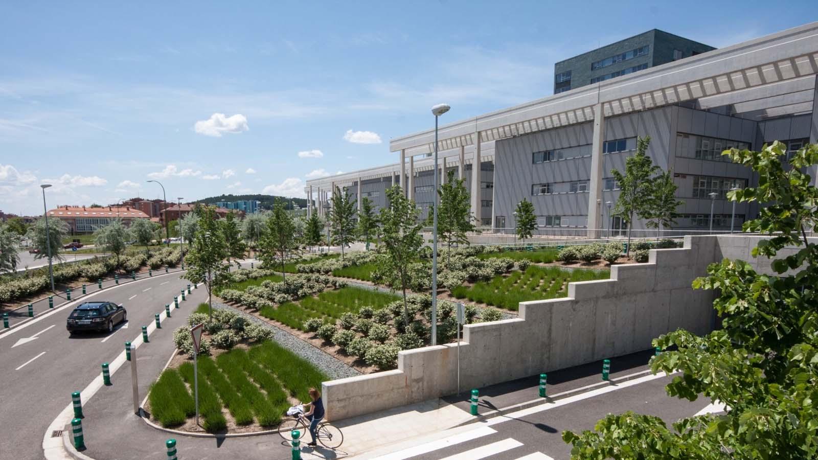 Luis Vallejo y sus jardines artísticos
