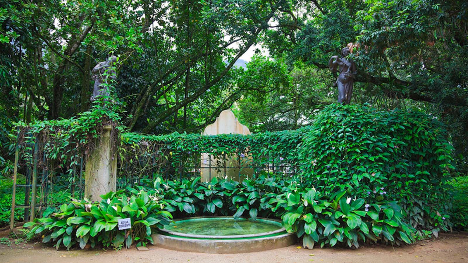 Jardín botánico de Río 1