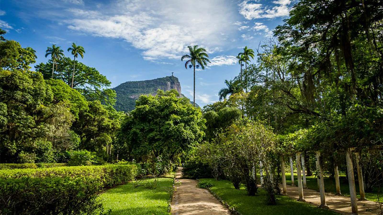 Jardín botánico de Río
