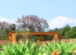Diseños realizados con Lands Design – «Parque de los Estanques»