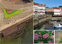Diseño y Ajardinamiento de tres rotondas en Mugardos, A Coruña